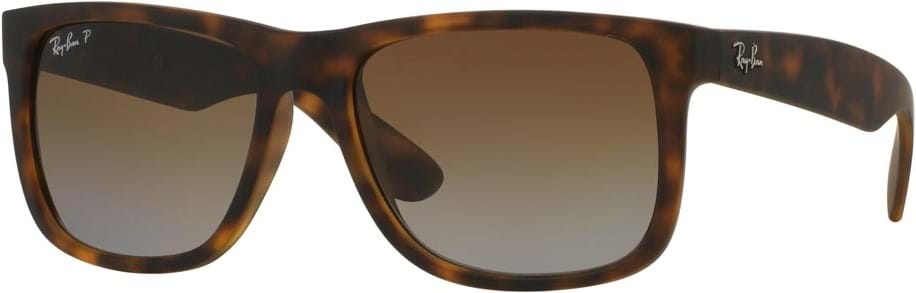 d955f1f389 Ray Ban