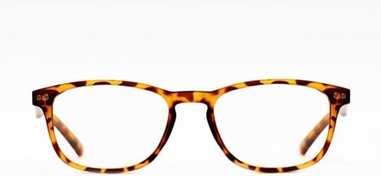 Z-Zoom Reading glasses with frame/temples colour Matt Frosted Black Orange Tortoise Special feature: Blue Light Filter, +3.00