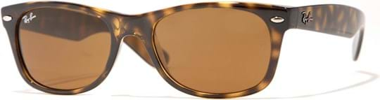 Ray Ban Icons Men's sunglasses with a frame made of acetate in brown and lenses in brown